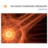Album Earthing by Anka Koziel