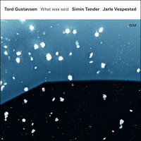 Tord Gustavsen with Simin Tander & Jarle Vespestad: What was said