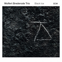 Album Black Ice by Wolfert Brederode