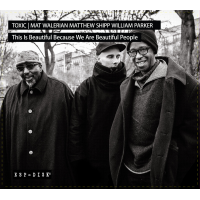 Toxic: Mat Walerian/Matthew Shipp/William Parker: This Is Beautiful Because We Are Beautiful People