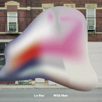 "Read ""Wild Man"" reviewed by Glenn Astarita"