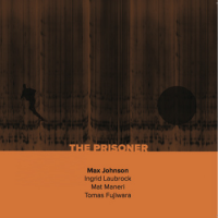 The Prisoner by Max Johnson