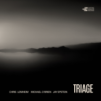 Album Triage by Chris Lomheim - Michael OBrien - Jay Epstein