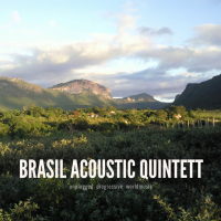 Album Brasil Acoustic Quintett by Richard Ebert