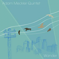 Album Wander by Adam Meckler