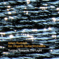 Adam Rudolph - Go: Organic Guitar Orchestra: Turning Towards The Light