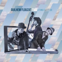 Guilhem Flouzat: A Thing Called Joe
