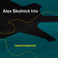 Alex Skolnick Trio: Transformation