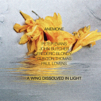 "Read ""A Wing Dissolved In Light"" reviewed by John Sharpe"