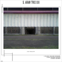 Sun Araw Trio XIII - Antwerp by Tomo Jacobson