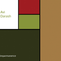 Avi Darash: Impermanence