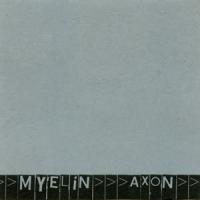 Myelin: Axon