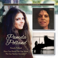 Album Pamela Polland / Have You Heard The One About The Gas Station Attendant? by Pamela Polland