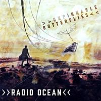 Album Unpinnable Butterflies by Gabriel Judet-Weinshel