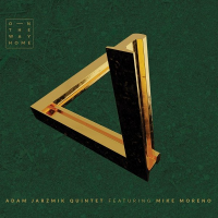 Album On The Way Home by Adam Jarzmik
