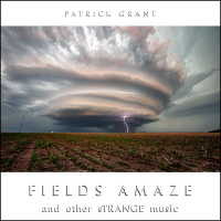 FIELDS AMAZE and other sTRANGE music