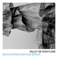 Becca Stevens, Elan Mehler: Pallet On Your Floor