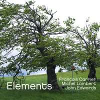 Elements by Francois Carrier