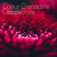 Album Coeur Grenadine (Single) by Christophe Goze