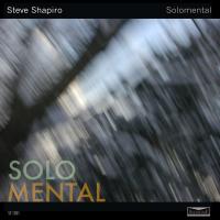 Album Solomental by Steve Shapiro