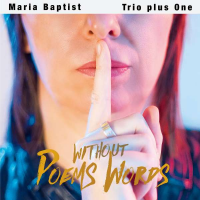 Album Poems Without Words by Maria Baptist