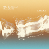 Album Transients Volume 2 by Andrea Keller
