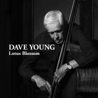 Album Lotus Blossom by Dave Young