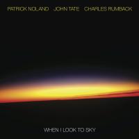 Patrick Noland: When I Look to Sky