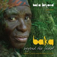 Beyond the Forest by Baka Beyond