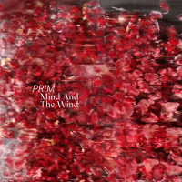 Album PRIM - Mind And The Wind by Felix Biller