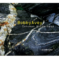 Bobby Avey: Inhuman Wilderness