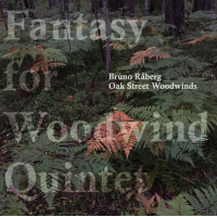 Fantasy for Woodwind Quintet