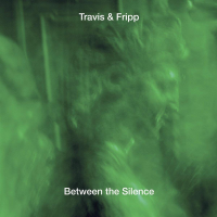 Between the Silence by Robert Fripp