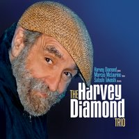 The Harvey Diamond Trio