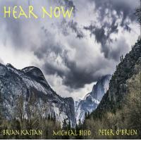 Album Hear Now by Brian Kastan