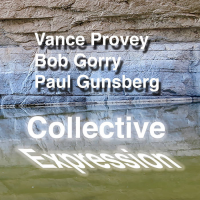 Vance Provey - Bob Gorry - Paul Gunsberg: Collective Expression