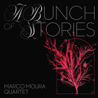 Album A Bunch of Stories by Marco Moura