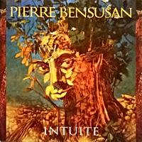 Album Intuite by Pierre Bensusan