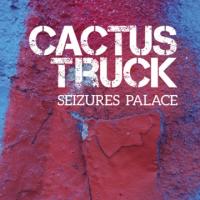 Seizures Palace