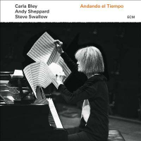 "Read ""Carla Bley & Jack DeJohnette: ECM Trios"" reviewed by Mark Sullivan"