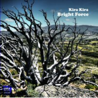 "Read ""Bright Force"" reviewed by Karl Ackermann"