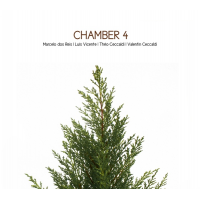 "Read ""Chamber 4"" reviewed by John Sharpe"