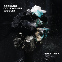 "Read ""Salt Task"" reviewed by Mark Corroto"