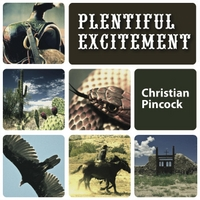Album Plentiful Excitement by Christian Pincock