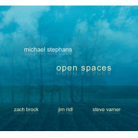 "Read ""Open Spaces"" reviewed by Chuck Koton"