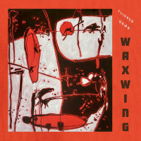 'Flicker Down,' New Release From Modern Chamber Jazz Trio Waxwing, Available On May 21