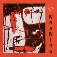 Album Flicker Down by Waxwing
