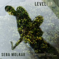 Level Up by Seba Molnar