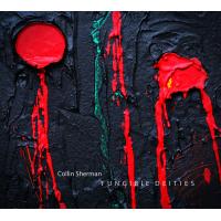 Collin Sherman: Fungible Deities