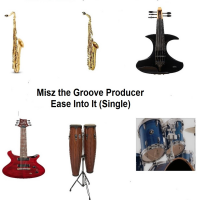 Album Ease Into It (Single)  by Misz The Groove Producer